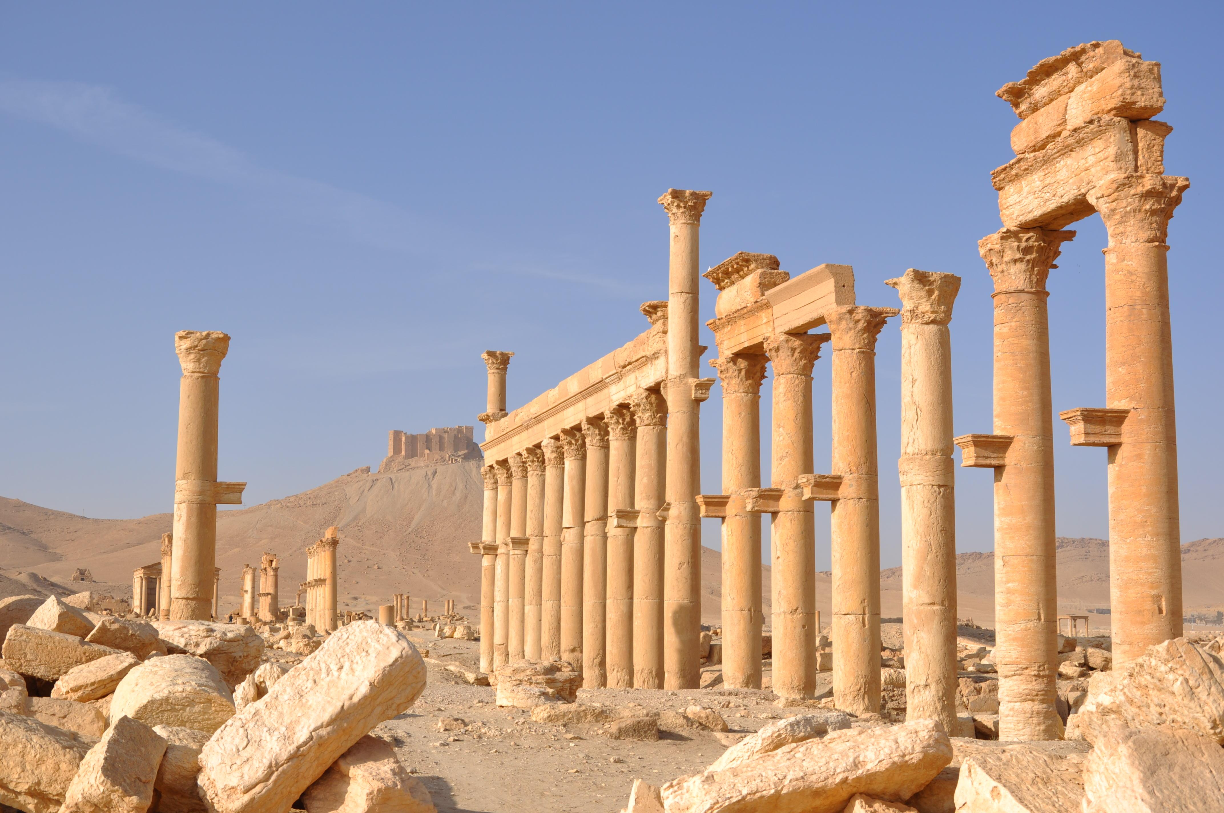 Luca Errera, Daniela Trastulli, Siria, Palmira