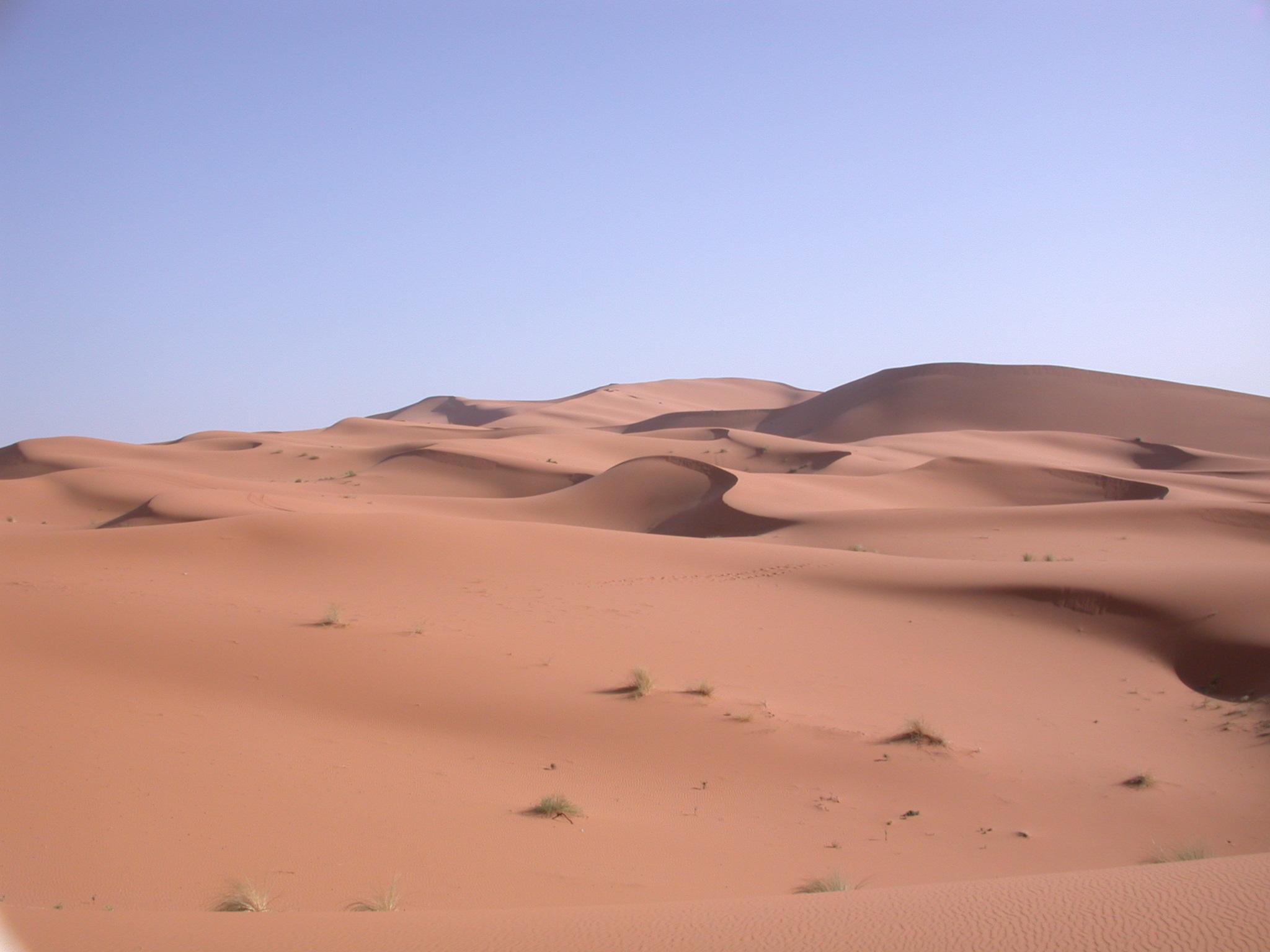 Luca Errera, Daniela Trastulli, Marocco, deserto, Sahara